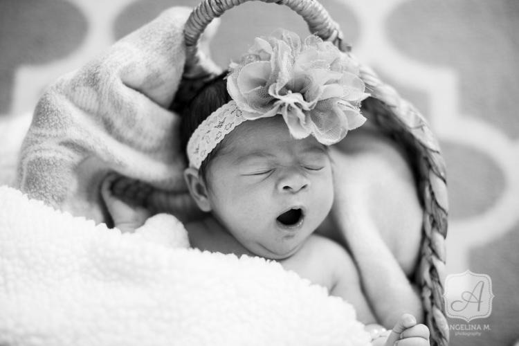 chalfont pa newborn family portraits-1