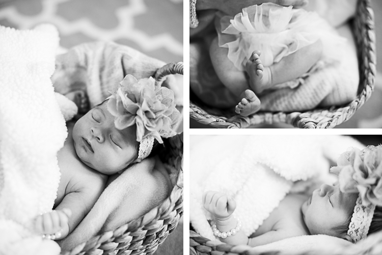 chalfont pa newborn family portraits-2-1