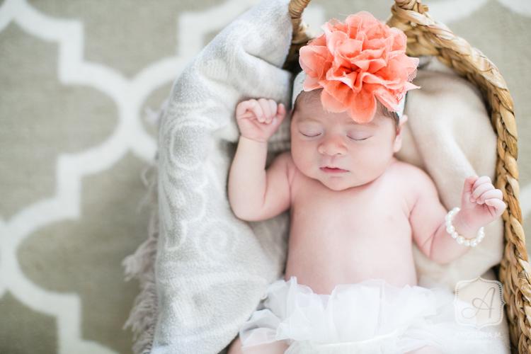 chalfont pa newborn family portraits-2